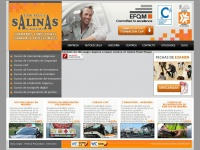 gruposalinas.net
