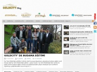 goldcityhotel.com.tr